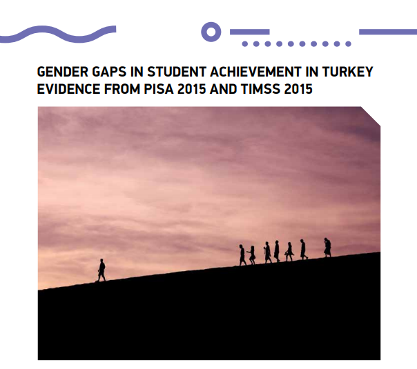 Gender Gaps in Student Achievement in Turkey Evidence From PISA 2015 and TIMSS 2015